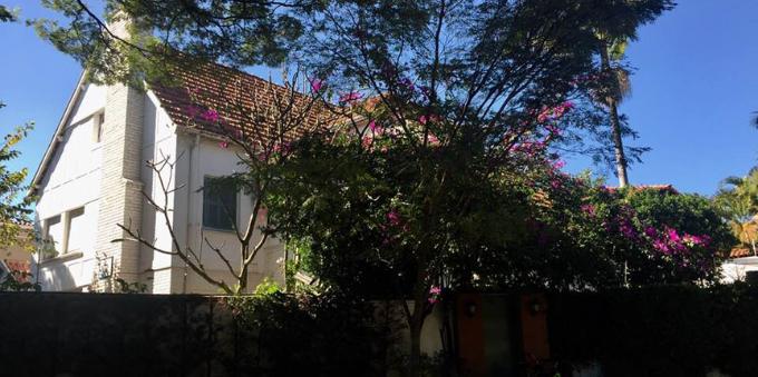 jardim-paulista-vera-suplicy-gemeos
